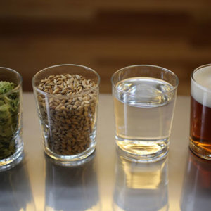 Сахара как пищевые добавки в пиве